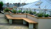 11 lời khuyên hữu ích nhất khi thiết kế vườn trên sân thượng nhà phố