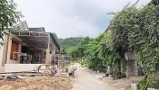 Bản tin bất động sản chiều ngày 3/7: Mất nhà đất vì sổ đỏ giả