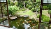 Đưa ngôi nhà đến gần với thiên nhiên nhờ sân vườn xanh mát