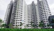 Bình Dương: Nguồn cung căn hộ cao gấp 5 nhà liền thổ