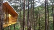 Ngôi nhà gỗ trong truyện cổ tích được tái hiện ở Đà Lạt thơ mộng