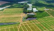 """Farmstay được chào bán rầm rộ kèm """"bao"""" lãi"""