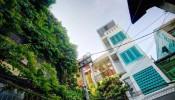 Khám phá không gian bên trong ngôi nhà nhiệt đới Tropical House