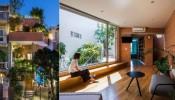 Hà House: căn nhà phố ngập tràn sắc xanh giữa lòng Sài Gòn
