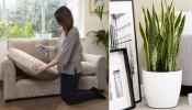 Dọn nhà đón Tết sao cho sạch, nhanh, thơm và đẹp?