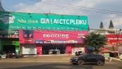 Gia Lai: Hàng loạt doanh nghiệp trục lợi đất công