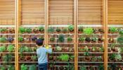Thiết kế không gian sân vườn độc đáo- Xu hướng hot 2019
