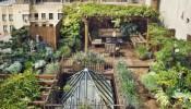5 bước để có một khu vườn trên sân thượng ấn tượng