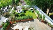 Hướng dẫn thiết kế vườn rau sạch tại nhà
