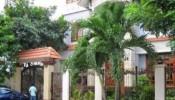 Phong thủy trồng cây trước cổng nhà giúp gia chủ vượng khí, vượng tài