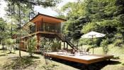 Ngôi nhà giữa rừng hòa mình vào thiên nhiên hoang sơ
