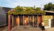 Độc đáo ngôi nhà mái đỏ với vườn rau bậc thang ở Quảng Ngãi