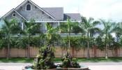 Lựa chọn cây trồng trước nhà vừa đẹp, vừa hợp phong thủy