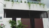 Ngôi nhà phố xanh tươi cây cối cùng lối thiết kế hiện đại