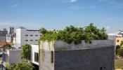 'Lá phổi xanh' của ngôi nhà tại Đà Nẵng khiến người ngắm không khỏi trầm trồ