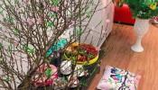 Trang trí nhà ngày Tết không thể thiếu những loại cây, hoa này