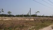 Dự án sân bay Long Thành: Giá đền bù đất cao nhất hơn 6,5 triệu đồng/m2