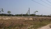 Thu hồi thêm 4ha đất cho dự án sân bay Long Thành