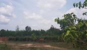 Đồng Nai: Định giá hơn 300 thửa đất của Alibaba