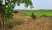 Đầu tư đất nền dưới 1 tỷ đồng tại các địa phương mùa Covid-19