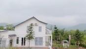 Ngôi nhà vườn 1000m² có sân vườn rực rỡ sắc màu hoa lá ở Hòa Bình của vợ chồng trẻ
