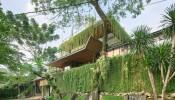 Ngôi nhà phủ kín cây xanh như bước ra từ câu chuyện cổ tích