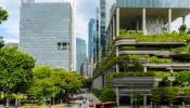 Doanh nghiệp bất động sản ít mặn mà với công trình xanh
