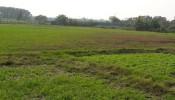 Hà Nội tiến hành kiểm tra việc quản lý đất đai tại 4 quận, huyện