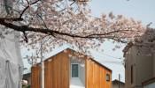Căn nhà nhỏ 67m2 mang lại nguồn cảm hứng bất tận bởi các ô cửa sổ và thiết kế không gian dạng xoắn ốc