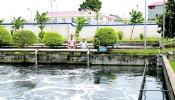 Vĩnh Phúc: Cần kiểm soát nghiêm việc xả thải ra môi trường tại các khu, cụm công nghiệp