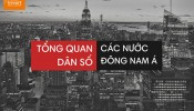 Độ tuổi trung bình & dân số Việt Nam so với các nước Đông Nam Á ra sao?