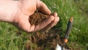 Quy định về cải tạo, quy trình thủ tục, mẫu đơn xin cải tạo đất nông nghiệp