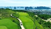 Vingroup rút khỏi dự án 270 ha ở Quảng Ninh