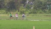 TP.Hồ Chí Minh: Chủ trương cho xây dựng nhà tạm trên đất nông nghiệp