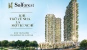Newstarland phân phối dự án Sol Forest KĐT Ecopark
