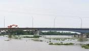 Xây 3 cây cầu nối TP.HCM - Long An - Tiền Giang