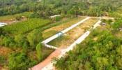 Tìm hiểu về đất CLN và các quy định chuyển nhượng, sử dụng đất CLN