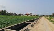 Nghệ An: Vì sao huyện Quỳnh Lưu ra văn bản dừng ngay việc tổ chức đấu giá 23 lô đất?