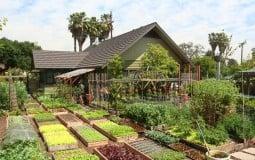 Thăm quan ngôi giản dị và mảnh vườn 1 không 2 mà ai cũng phải mơ ước