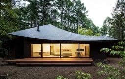 Ngôi nhà có phần mái đặc biệt giữa rừng cây ở Nhật Bản