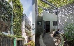 Mặt tiền ấn tượng với tấm 'màn che' bằng cây xanh khổng lồ của Breathing House