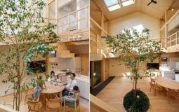 Thiết kế không gian mở xuyên suốt tinh tế cho tổ ấm của đôi vợ chồng trẻ