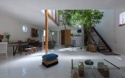 Con người và thiên nhiên: Sự kết đôi ăn ý như một lẽ vốn thế của ngôi nhà Ma House
