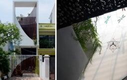 Ngôi nhà ống ở Vĩnh Phúc ấn tượng với thiết kế độc đáo