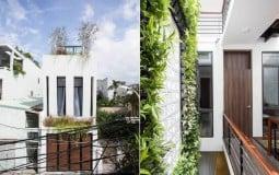 Thu Bao's House - ngôi nhà xanh trong hẻm tại thành phố Đà Nẵng