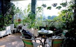 5 mẫu thiết kế vườn lan trên sân thượng đẹp mê mẩn