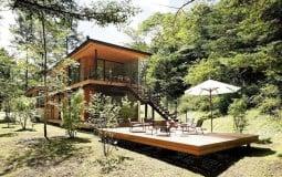Cảm giác bình yên đến từ biệt thự gỗ giữa rừng xanh