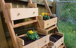 10 ý tưởng thiết kế vườn rau sáng tạo tại nhà