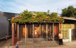 Ngôi nhà nổi bật với vườn rau 7 tầng trên mái