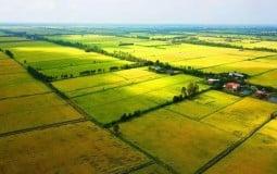 Hạn mức giao đất nông nghiệp, đất ở cho người dân là bao nhiêu?